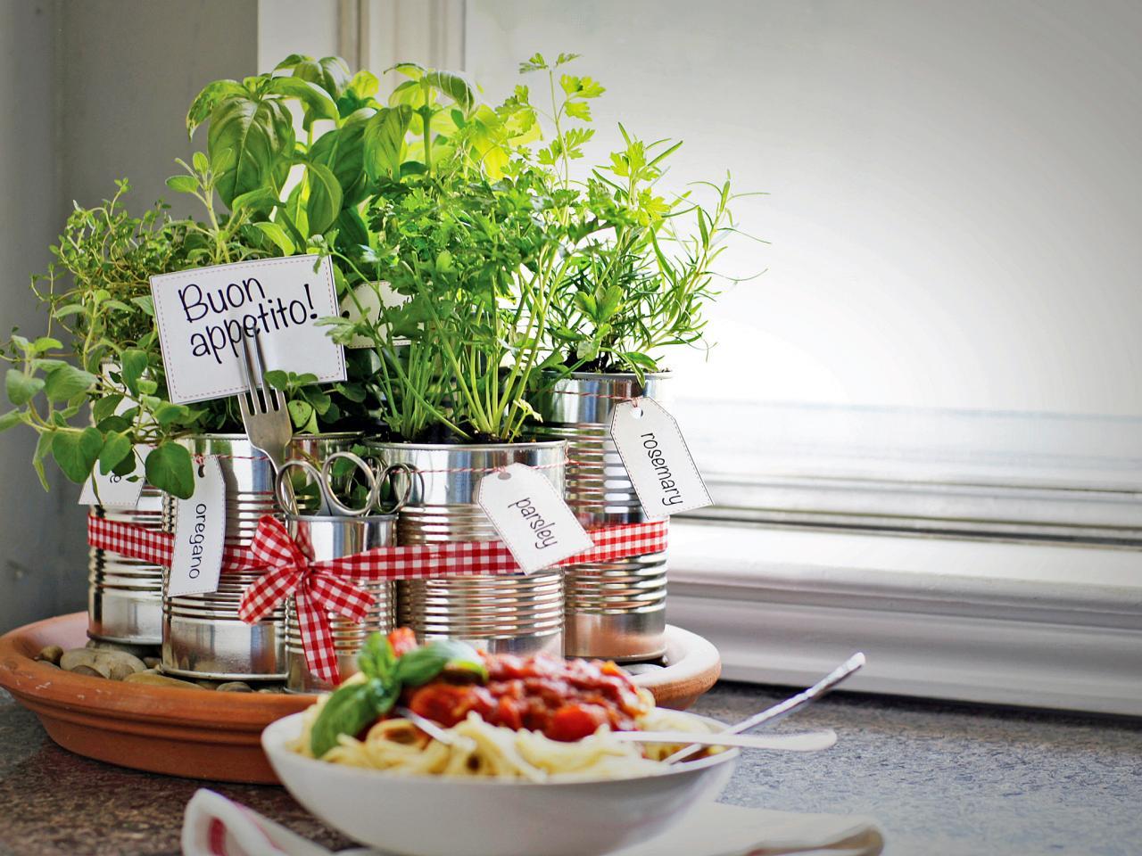 Berkreasi Menghijaukan Dapur Dengan Sayuran