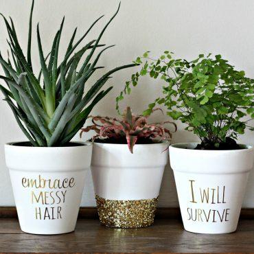 Tips Memilih Pot untuk Tanamna Indoor