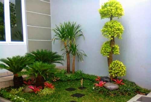 Cara Mempercantik Taman Rumah Dengan Biaya Sedikit