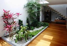 Cara Membuat Taman di Dalam Rumah