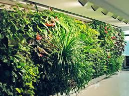 Desain Taman Vertikal Pada Rumah